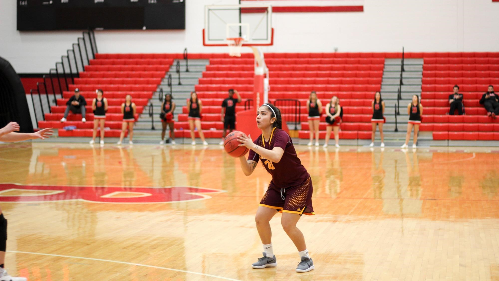 Concordia-Chicago Cougars women's Basketball- 2018 ...