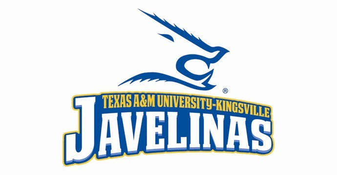 about texas am university kingsville up ingcarshq