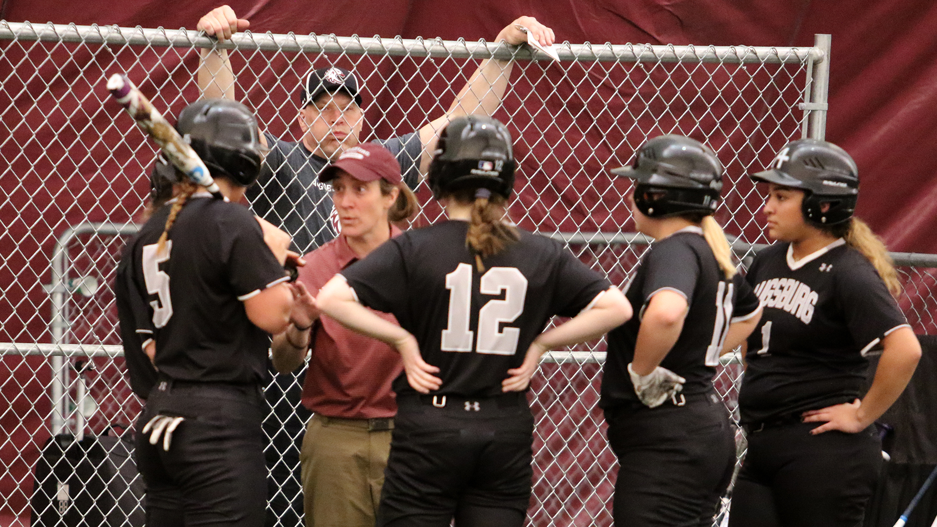 Augsburg Softball Scores Results Schedule Roster & Stats MIAC