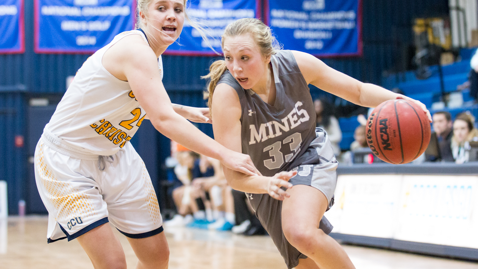 Colorado Mines Orediggers Womens College Basketball ...