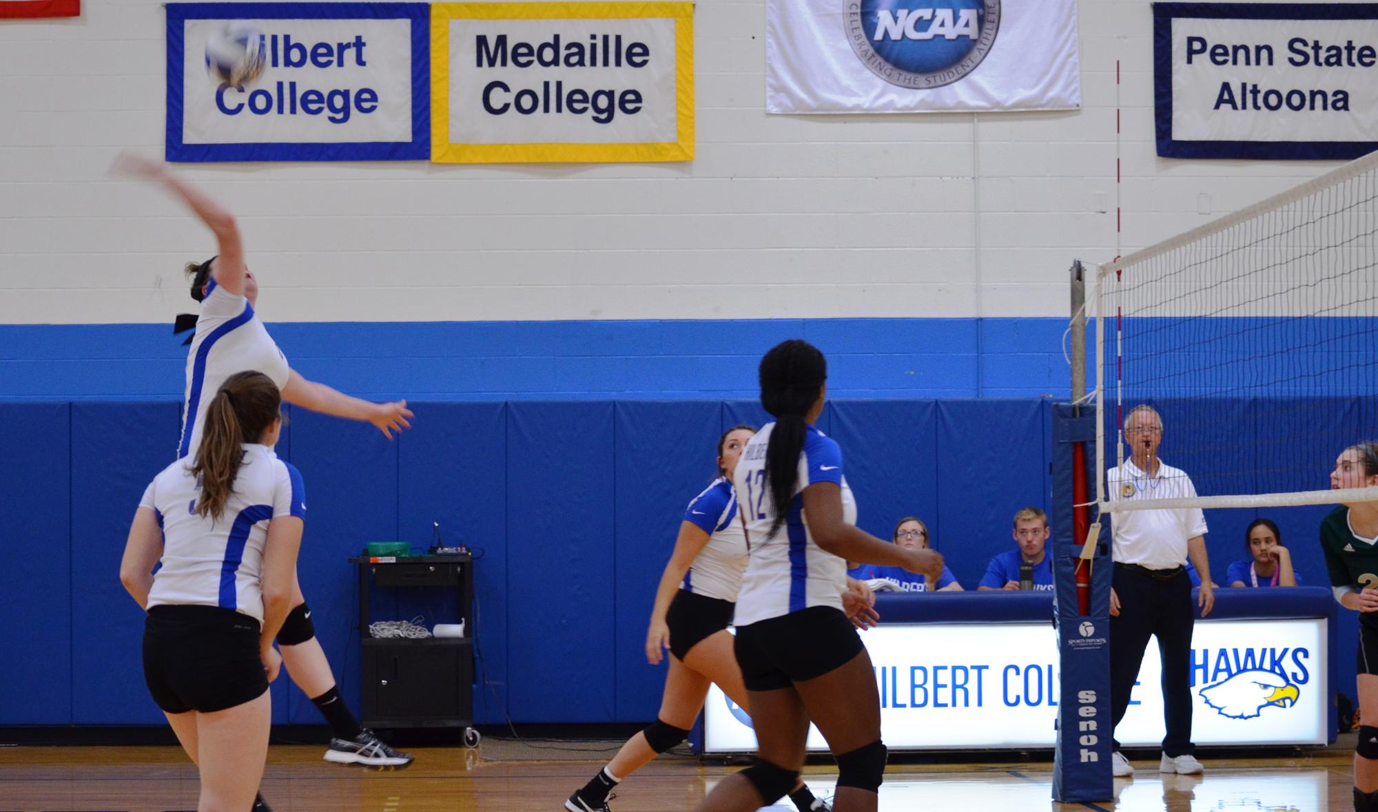 hilbert women The hilbert college (21-6) women's basketball team made program history when they won their first amcc title on sunday afternoon by defeating mount aloysius college (17-8) 76-52.