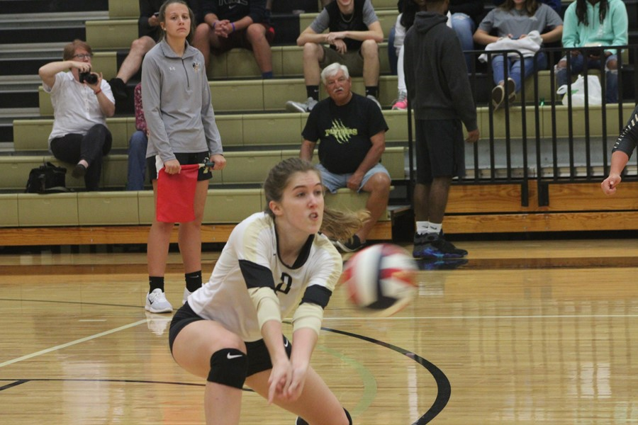 ferrum women The latest tweets from ferrum volleyball (@ferrumvb) the official twitter page for the ferrum college volleyball team fcvb is a member of ncaa division iii and the usa south athletic conference.